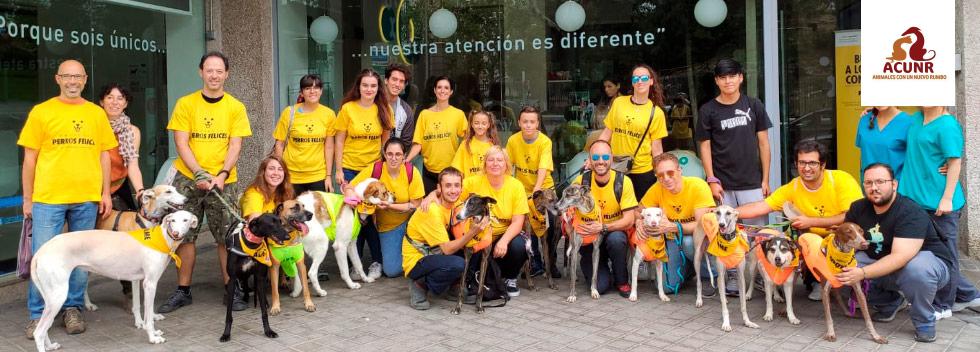 Proyecto Perros Felices, voluntarios de ACUNR