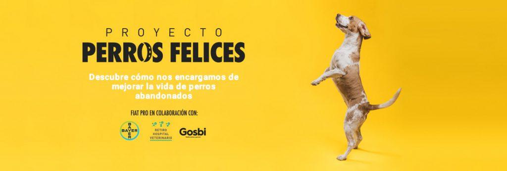 Proyecto Perros Felices ACUNR Gosbi Bayer